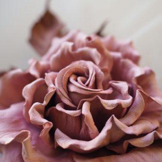 blush pink leather rose corsage detail