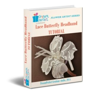 lace butterfly 3 d cover