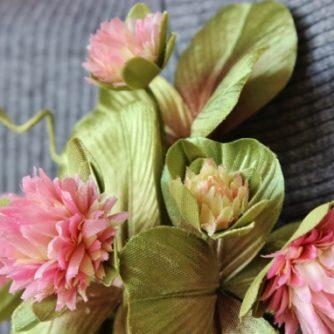pink clover closeup (570x382)