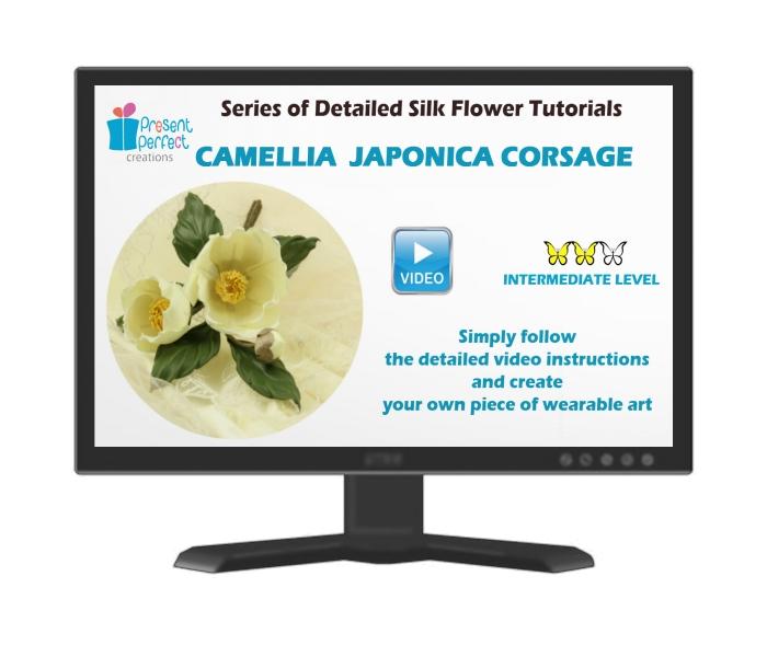 camellia japonica comp screen JPEG