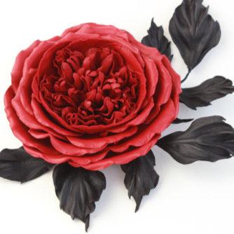 red English rose 1