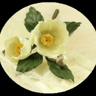 round camellia pic