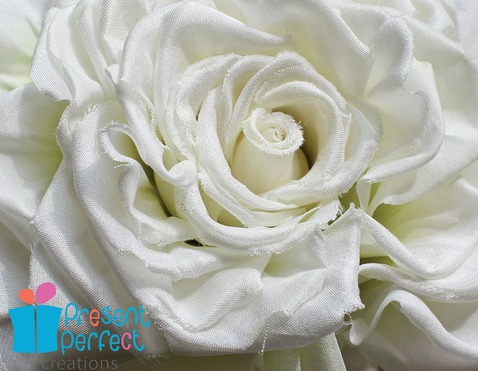 white bride rose