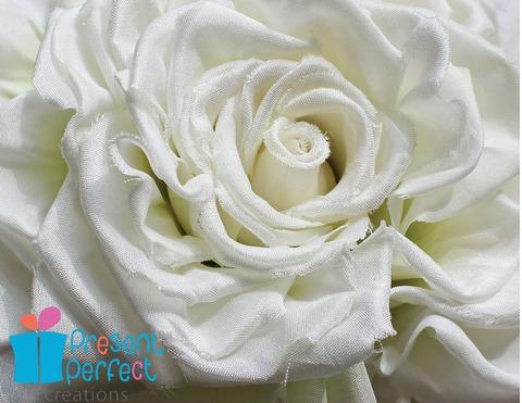 white bride rose