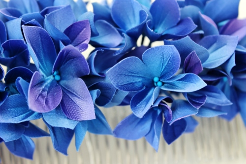 blue hydrangea detail ph (500x333)