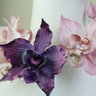 pink and purple orchids