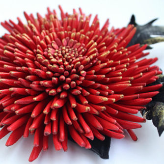 red leather chrysanthemum 2