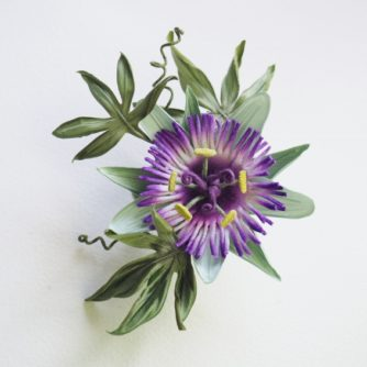 silk passion flower kit