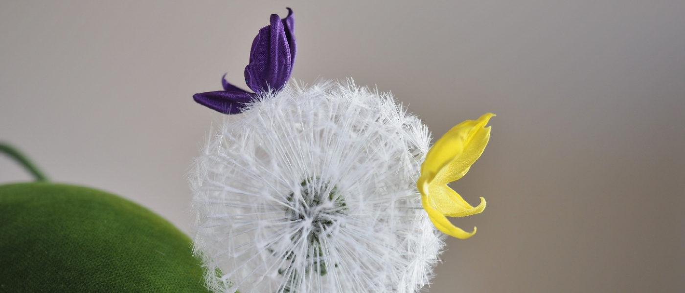 silk dandelion