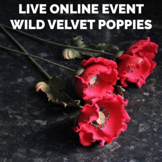 WILD VELVET POPPIES live online event